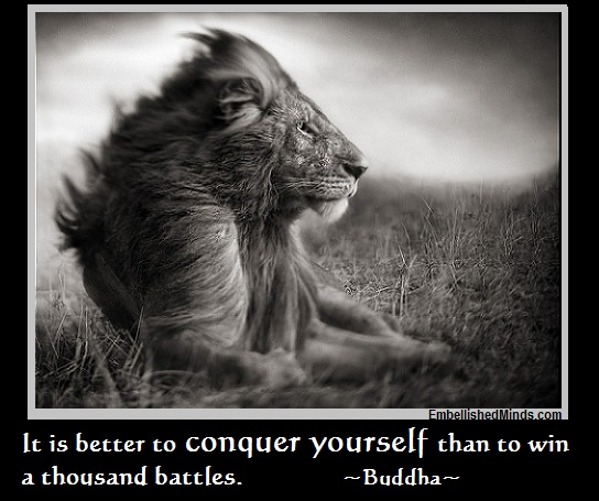 Wisdom Quotes: It is Better to Conquer Yourself