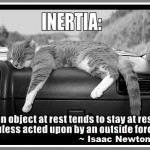 Best Motivation Quotes - Isaac Newton Quotes
