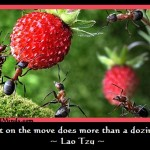 Best Motivation Quotes - Lao Tzu Quotes