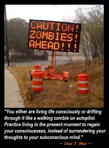 life lesson quotes Don T. Mai Embellished Minds quotes Life Lesson Quotes: Drifting Like a Walking Zombie